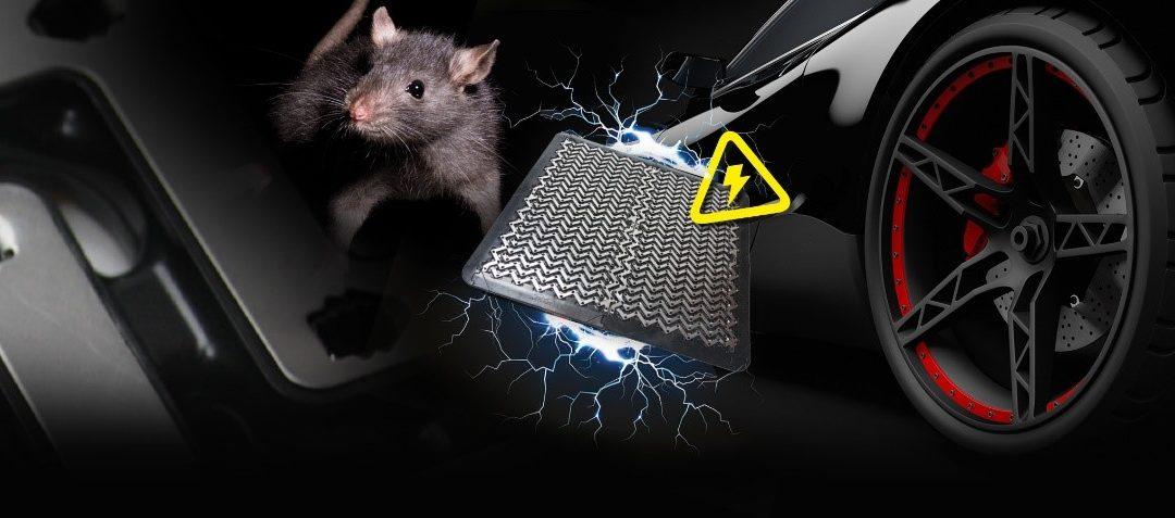 Rat-Mat-Header-1080x477