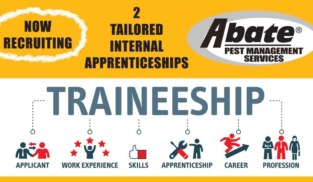 tailored-internal-apprenticeship-1080x628